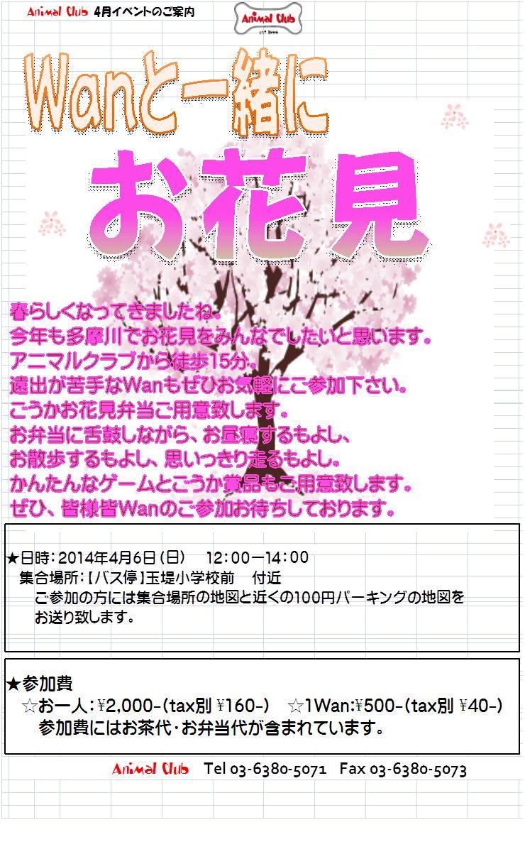 4月お花見メール画像